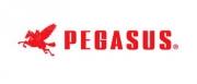 * PEGASUS spare parts